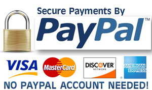 We accept Paypal for online payments
